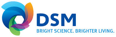 DSM provides a full spectrum of engineering plastics for electronic applications in the connected car